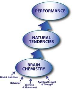 Performance Flow